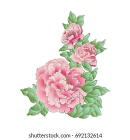 Hand drawn watercolor pink peonies in chinese style. Vector illustration.