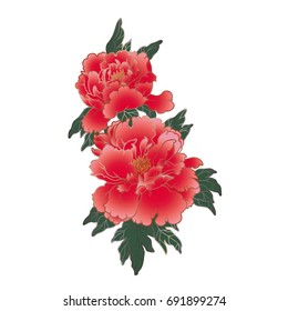 Hand drawn watercolor red peonies in traditional chinese style. Vector illustration.