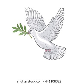 Hand drawn white  flying dove with olive branch.