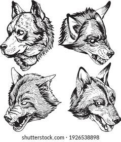 hand drawn wild wolf set
