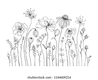 Hand drawn wildflowers and poppies, black and white isolated illustration. Decorative vector print for your template.