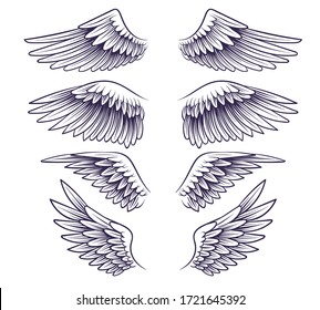 Hand drawn wing. Sketch angel wings with feathers, elements for logo, label or tattoo. Stencil silhouettes vintage isolated vector drawing set