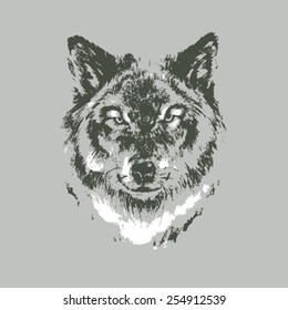 Hand drawn wolf sketch on gray background
