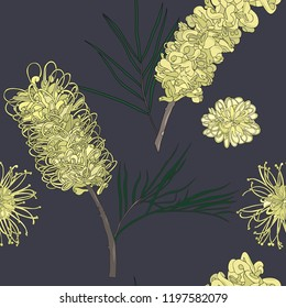 hand drawn yellow grevillea australia native flower seamless pattern