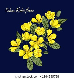 Hand drawn yellow ochna kirkii flower vector illustration