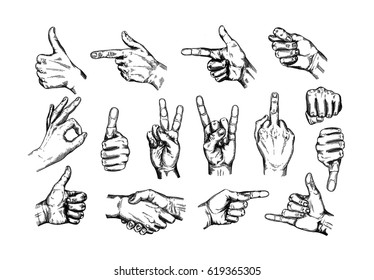 Hand gesture sketch set. Illustration isolated on white background. Engraving style