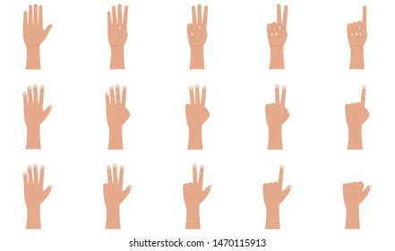 Hand gestures icons set in flat style. Palm and wrist. One, two, three, four, five fingers vector illustration on a white background