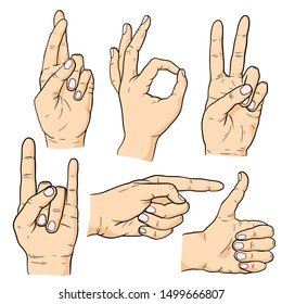 Hand gestures set isolated on white background. Colorful vector cartoon illustration.