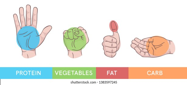 Hand gestures set isolated. Palm, fist, thumb up, cupped hand. Portions of food. Infographic. Modern beautiful style. Realistic. Flat style vector illustration. Signs and icons. Different positions.