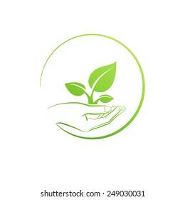 Hand holding plant, logo  concept vector illustration