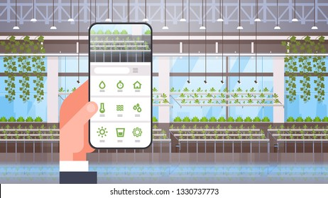 hand holding smartphone using smart control farming system mobile application organic hydroponic green plants row cultivation farm modern greenhouse interior horizontal