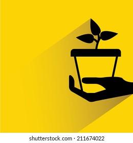 hand holding tree pot