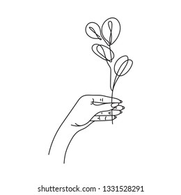 Hand holds eucalyptus silver dollar branch continuous line drawing. One line . Hand-drawn minimalist illustration, vector.