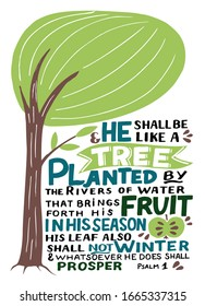 Hand lettering with Bible verse He shall be like a tree. Biblical background. Christian poster. Scripture print. Motivational quote. Modern calligraphy. Psalm 1