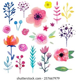Hand Painted Watercolor Flower. Vector illustration.