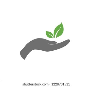 Hand with pant. Plant growing icon. Vector hand with growing plant. Perspective icon.