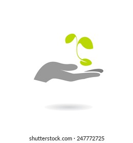 Hand and plant isolated on white background. Vector illustration