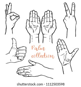 Hand poses icon, Palm signs, flat of the hand collection set: thumb up, victory hand drawn line art sketch stock vector illustration black and white