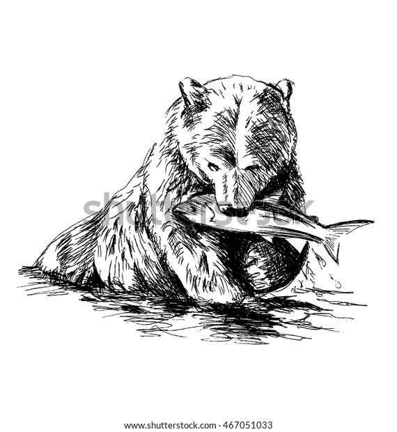 картинки в карандаше медведя с рыбой сказочные участке
