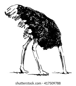 Hand sketch ostrich with your head in the sand