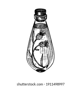 Hand sketched bottle with flower extract in vintage style. Glassware hand drawing for cosmetics or perfume. Alchemy laboratory equipment sketch. Magic, witchcraft, and mysticism glassware illustration