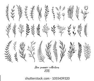 Hand sketched vector floral elements ( leaves, flowers, swirls and branches). Botanical illustrations. Perfect for wedding invitations, greeting cards, quotes, blogs, Frames