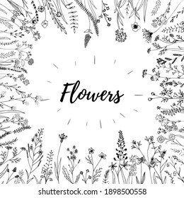Hand sketched vector flowers elements. Wild and free design concept. Perfect for invitations, greeting cards, quotes, blogs, Wedding Frames, posters and fabric.