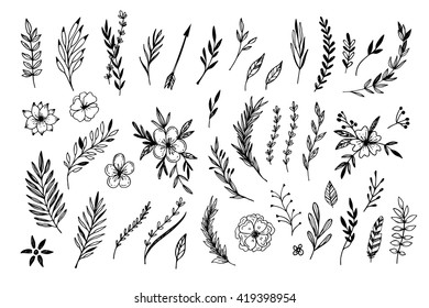 Hand Sketched Vector Vintage Elements Laurels Frames Leaves Flowers Swirls