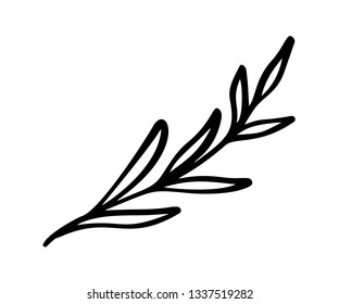 Hand sketched vector vintage floral elements - laurels leaves flower swirls and feathers. Wild and free. Perfect for invitations greeting cards, quotes blogs wedding frames, posters