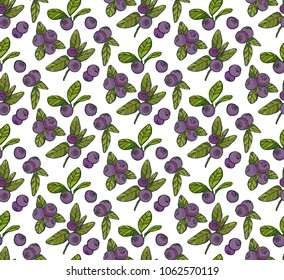 handdrawn blueberry seamless pattern on white background, vector illustration