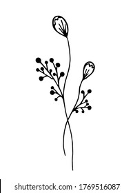 Hand-drawn branch with flowers in doodle style. Branch with flowers on a white background. Vector illustration. Flowers can be used on postcards, stickers, posters.