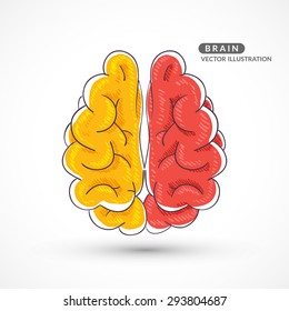 Hand-drawn colored brain. Color sketch of the brain. Colored hand drawn icon of the brain.