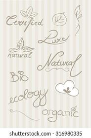 Handdrawn cotton and natural symbols