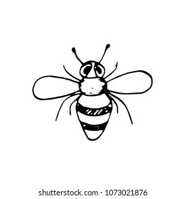 Handdrawn doodle bee icon. Hand drawn black bee sketch. Sign symbol. Decoration element. White background. Isolated. Flat design. Vector illustration