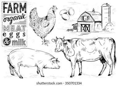 hand-drawn farm animals
