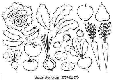Hand-drawn farm produce. Set of vector illustrations in ink drawing style, black outlines