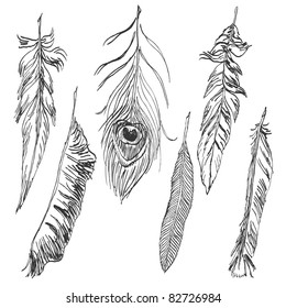 Hand-drawn feather collection