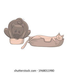 Hand-drawn funny pets. The sly cat and the dog sleep in their beds. Humor, sarcasm, vector illustration for design or textile print