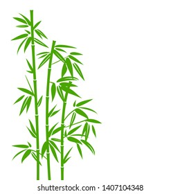 Handdrawn Green Bamboo Plant Background
