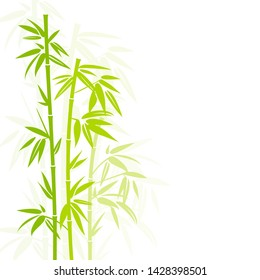 Handdrawn Green Bamboo Plant Vertical In Square Background Shadow
