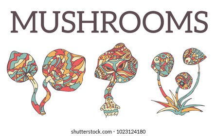 Hand-drawn hallucinogenic mushrooms