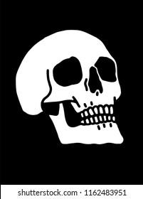A hand-drawn human skull illustration