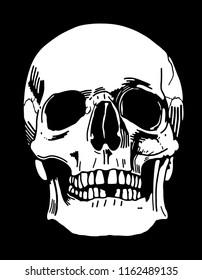 A hand-drawn human skull illustration on black background