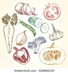 Hand-drawn illustration of vegetables and fruits, vector