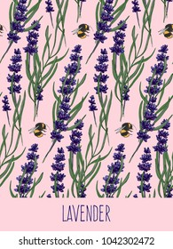 handdrawn lavender seamles pattern, vector illustration