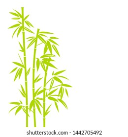 Handdrawn Light Green Bamboo Plant Vertical In Square Background