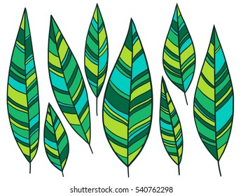 Hand-drawn ornamental nature leaves lineart collection. Vector colorful chic boho tribal feather illustration set.