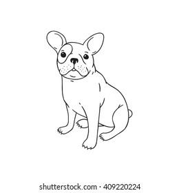 Handdrawn pen french bulldog dog puppy illustration