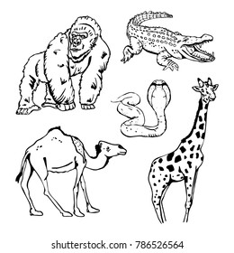 Hand-drawn pencil graphics, african animals set. Black and white logo, sign, emblem, symbol. Stamp, seal. Simple illustration. Sketch.