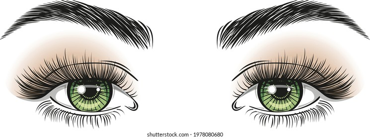 Hand-drawn realistic woman's sexy luxurious eyes with perfectly shaped eyebrows, different eyeshadows and full lashes. Browbar. Concept for business visit card, typography vector. Perfect salon look.